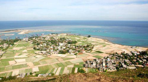 Kinh nghiệm cần biết khi du lịch đảo Lý Sơn  - Ảnh 4