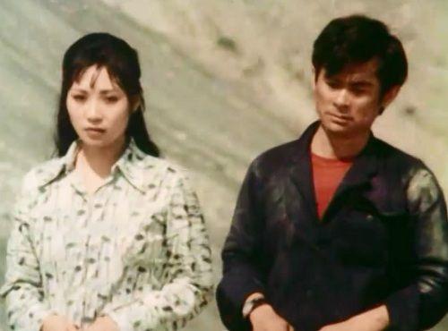 Bộ phim giúp NSƯT Anh Dũng - Phương Thanh nên duyên vợ chồng - Ảnh 1