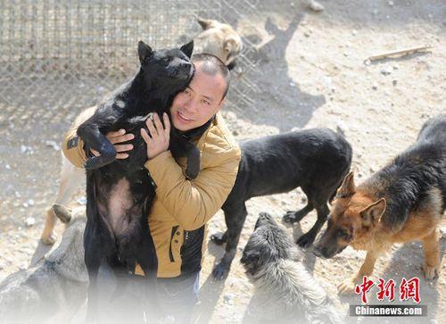Chàng triệu phú lâm vào nợ nần vì cưu mang hàng trăm con chó - Ảnh 1
