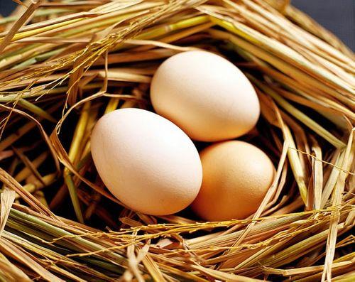 Những thực phẩm ăn cùng với trứng gà sẽ gây nguy hiểm - Ảnh 1