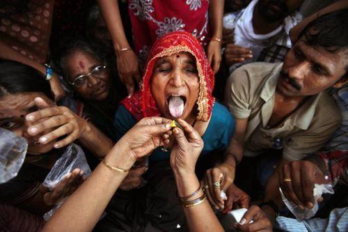 Hàng ngàn người Ấn Độ nuốt cá sống để chữa bệnh hen - Ảnh 2