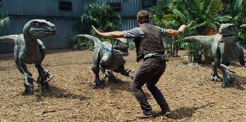 """2 con rồng Komodo ác đấu như  """"Cuộc chiến khủng long"""" - Ảnh 7"""
