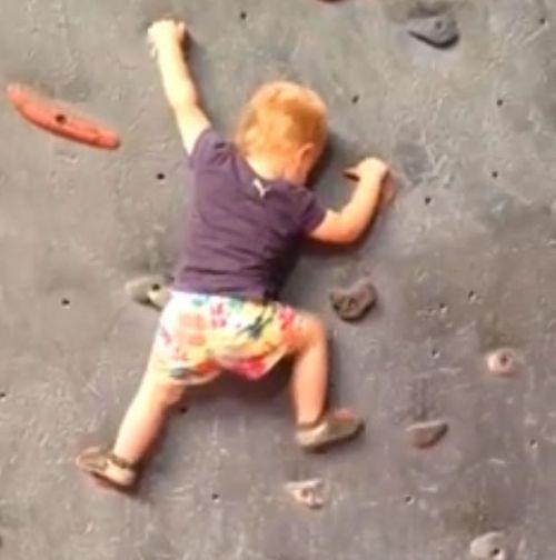 Video bà mẹ cho bé gái 19 tháng tuổi leo núi một mình gây sốc - Ảnh 1