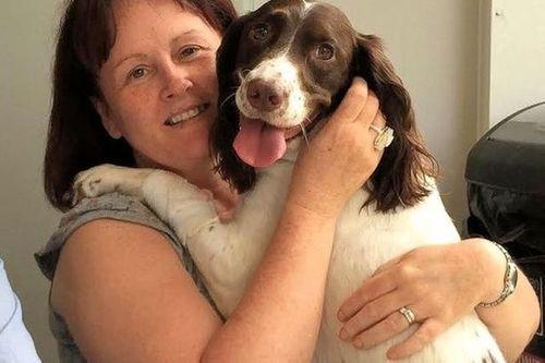 Bí ẩn cây cầu tự sát của loài chó ở Scotland - Ảnh 3