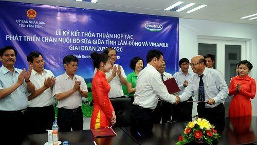 Hợp tác chiến lược giữa Vinamilk và tỉnh Lâm Đồng về phát triển chăn nuôi bò sữa - Ảnh 5
