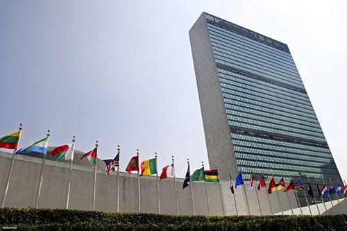 Tổng quan quá trình phát triển của Liên Hợp Quốc - Ảnh 1