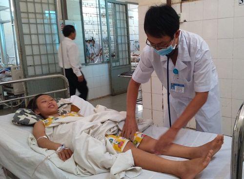 Bệnh nhân bị rắn lục đuôi đỏ cắn tăng đột biến - Ảnh 1