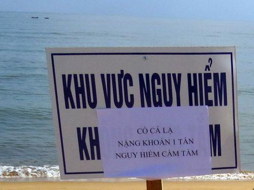 Cá lạ nặng khoảng 1 tấn xuất hiện tại biển Tuy Hòa, cảnh báo nguy hiểm - Ảnh 2