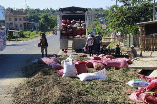 Gia Lai: Hai xe tải đâm nhau, 3 người thương vong - Ảnh 2