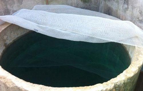 Phát hiện bể nước sinh hoạt có màu xanh bất thường - Ảnh 1