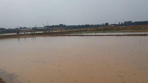 """Hà Nội: Nông dân """"kêu"""" ruộng bị xã đào sâu không thể cấy - Ảnh 2"""