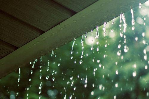 Dự báo thời tiết hôm nay 10/5: Chiều tối Bắc Bộ sẽ có mưa rào - Ảnh 1