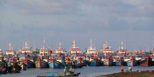 Cần bảo vệ ngư dân trước hành động gây hấn của Trung Quốc - Ảnh 1