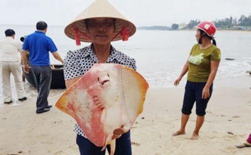 Thượng tướng Nguyễn Huy Hiệu: Formosa xả thải - bài học đắt giá! - Ảnh 2