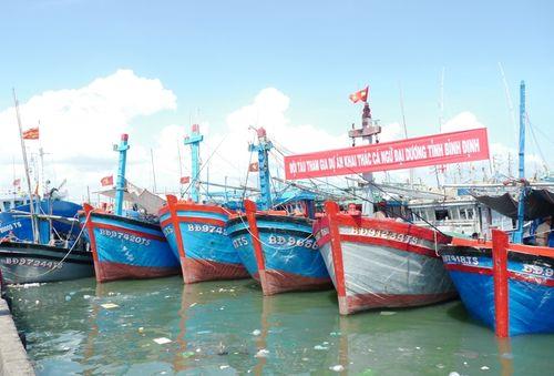 Chuyển giao công nghệ, ngư cụ khai thác cá ngừ hiện đại cho ngư dân - Ảnh 2