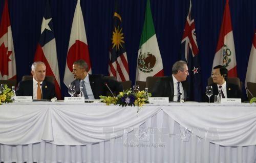 Chủ tịch nước tiếp tục dự các hoạt động tại APEC 23 - Ảnh 1