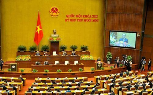 Quốc hội thảo luận dự án luật dược và luật thuế xuất khẩu - Ảnh 1
