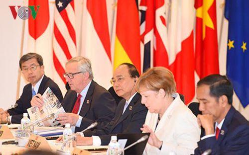 Việt Nam thể hiện có trách nhiệm với thách thức của khu vực, thế giới - Ảnh 3