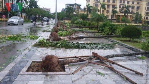Hình ảnh bão số 1 hoành hành tại các tỉnh miền Bắc - Ảnh 7