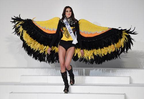 Vẻ đẹp tuyệt sắc của tân Hoa hậu Quốc tế 2015 Edymar Martinez - Ảnh 9
