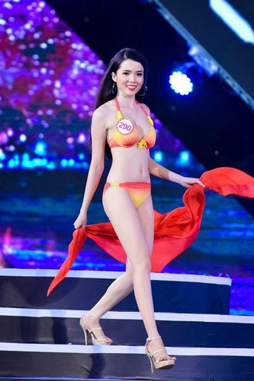 Sự thật tin thí sinh Hoa hậu Việt Nam trượt phía Nam, đỗ phía Bắc - Ảnh 1