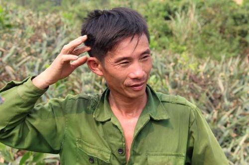 """Nghệ An: Dự án 10.000ha dứa """"chết yểu"""", nông dân lao đao - Ảnh 2"""
