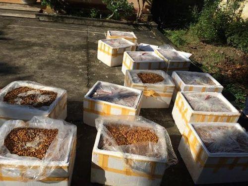 Bắt nhiều vụ vận chuyển thực phẩm bẩn, không rõ nguồn gốc - Ảnh 1