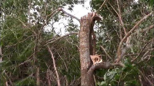 Lốc xoáy khiến 7 người bị thương, hơn 150 ngôi nhà bị tốc mái - Ảnh 4