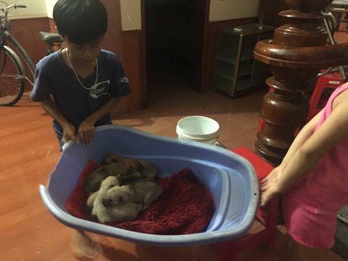 Hà Tĩnh: Nhiều gia đình chạy lũ trong đêm - Ảnh 1