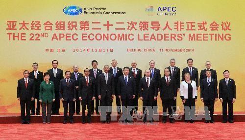Việt Nam phát huy vai trò tích cực trong APEC  - Ảnh 1