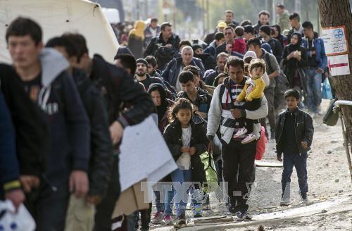 Ngăn dòng người di cư, EU đổ tiền cho châu Phi  - Ảnh 1
