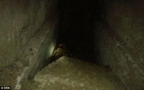 Bị bắt vì mắc kẹt khi đào mộ trộm răng vàng  - Ảnh 4
