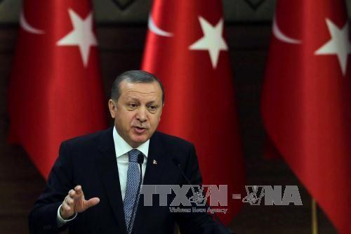 Góc khuất trong chuyến thăm Mỹ của Tổng thống Thổ Nhĩ Kỳ  - Ảnh 1