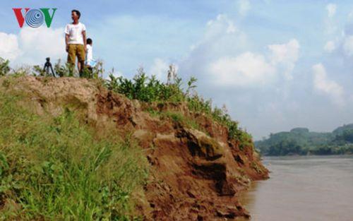 """Sạt lở nghiêm trọng bờ sông Hồng ở Yên Bái """"nuốt"""" hàng nghìn mét đất - Ảnh 2"""