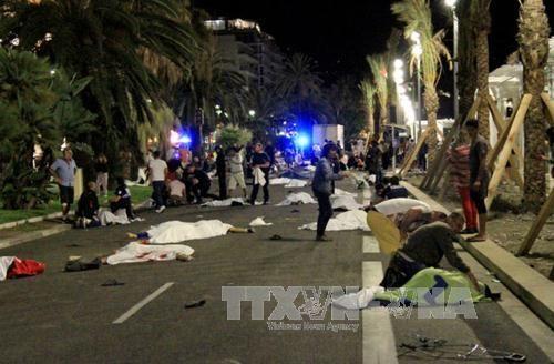 Việt Nam gửi điện chia buồn vụ tấn công khủng bố tại Nice - Ảnh 1