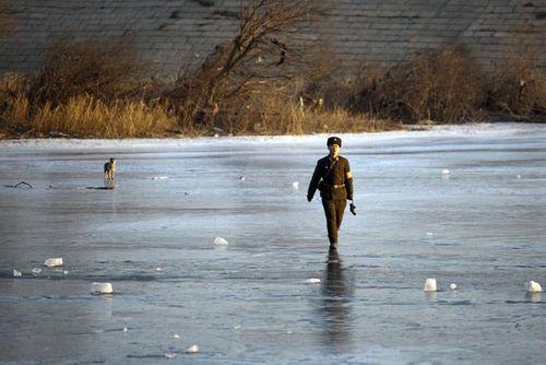 Triều Tiên tố Hàn Quốc thả rắn độc sang biên giới gây bất ổn - Ảnh 1