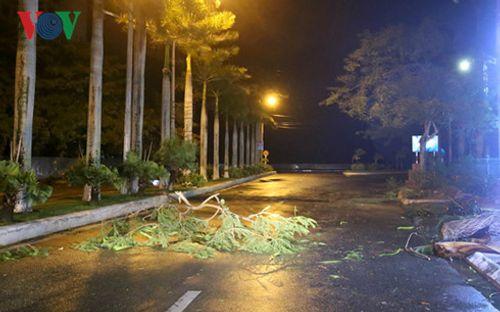 Hải Phòng, Quảng Ninh không chủ quan với hoàn lưu sau bão số 1 - Ảnh 2