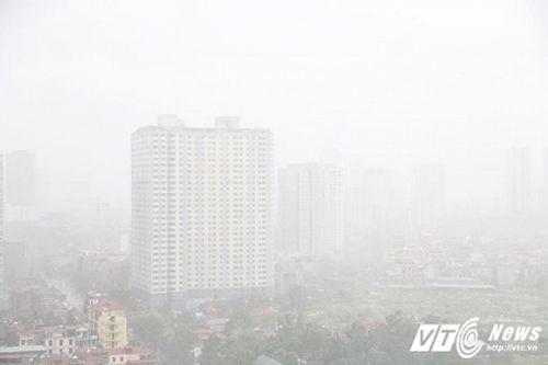 Mưa to, gió giật mạnh khiến cây đổ ngổn ngang tại Hà Nội - Ảnh 1
