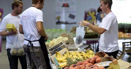 Giá lương thực thế giới tăng mạnh nhất trong 4 năm qua - Ảnh 1