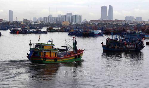 Đêm nay, ven biển Quảng Bình-Quảng Ngãi gió giật cấp 9-10 - Ảnh 1