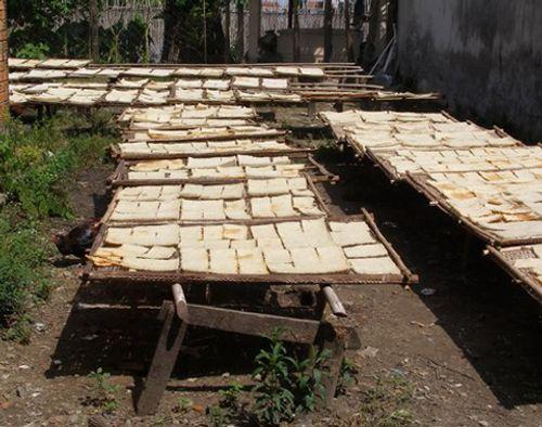 Chế biến cơm cháy chà bông như sản xuất thức ăn gia súc - Ảnh 4