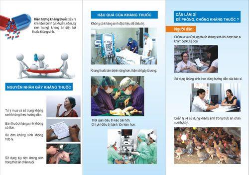 Việt Nam phối hợp với WHO truyền thông phòng kháng thuốc - Ảnh 1