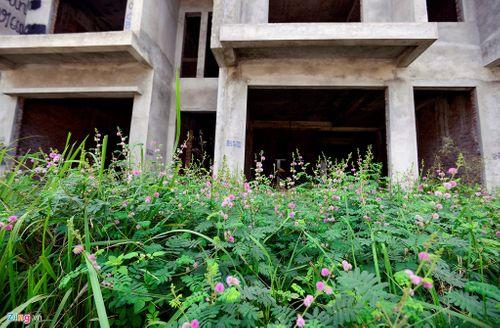 Những khu đô thị nghìn tỷ mọc rêu vắng bóng người - Ảnh 3