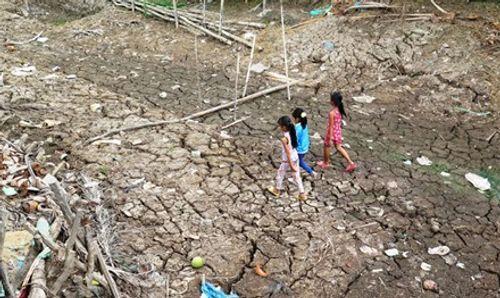 Sạt lở đất trên diện rộng tại tỉnh Cà Mau - Ảnh 2