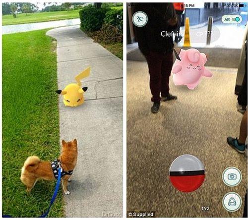 Tìm Pokemon ảo phát hiện xác chết thật - Ảnh 1