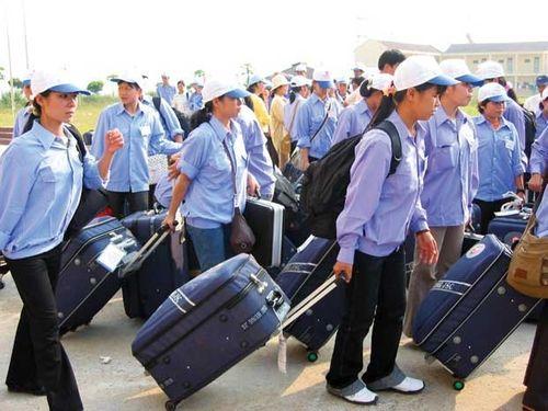 Tạm dừng tuyển lao động sang Hàn Quốc tại 90 quận, huyện - Ảnh 1