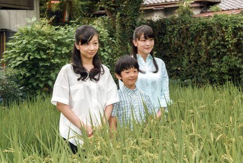 Cuộc sống giản dị ít người biết của hoàng tử Nhật Bản - Ảnh 1