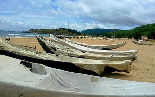 Trong tháng 10 tới sẽ có Đề án chuyển đổi nghề cho ngư dân - Ảnh 1