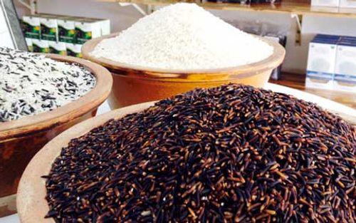 """Tin tức ATTP ngày 14/7: Sự thật về """"siêu gạo"""" chữa bách bệnh - Ảnh 1"""