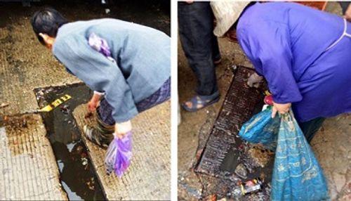 Tin tức an toàn thực phẩm ngày 5/7: Nhặt tôm từ cống rãnh đen ngòm đem bán - Ảnh 3